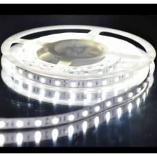 Лента светодиодная катушка 5м 7,2W IP20 12V холодный белый