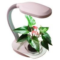 Специальные лампы: Для растений, животных.