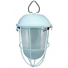 Светильник НСП-02-100-003 с решеткой окрашенный IP56
